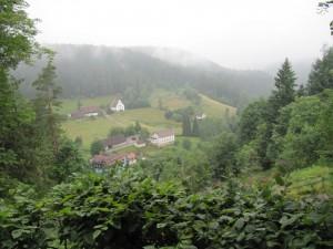 Aussicht auf Baiersbronn im Nebel