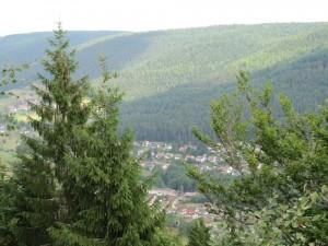 Aussicht vom König Wilhelmsturm
