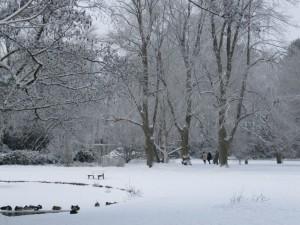 Kurpark Lüneburg Ententeich im Schnee