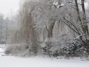 Kurpark Lüneburg im Schnee