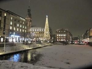 Großer Weihnachtsbaum Alster in Hamburg