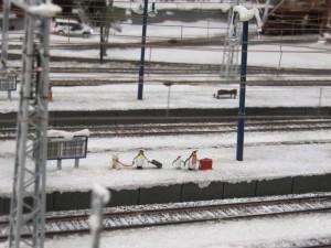 Die Pinguine warten auf den Zug